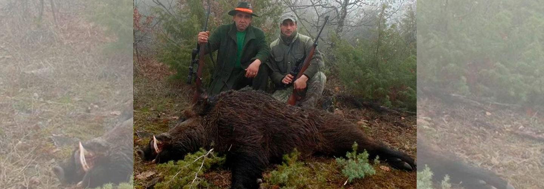 Teglskovens Hunting - jagtrejser til Bosnien