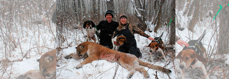 Teglskovens Hunting - Jagthistorier